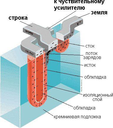 Рисунок 3 Устройство ячейки динамической памяти.